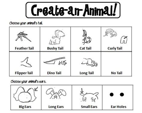 Best 25+ Animal Classification Activity Ideas On Pinterest  Animal Classification For Kids