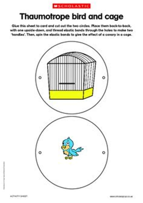 thaumatrope template bird cage 1000 images about tuto thaumatrope on pinterest cottage