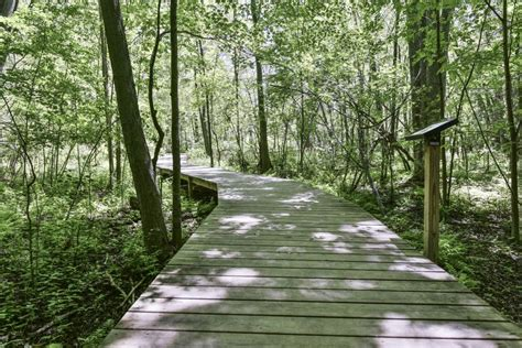 Safe Park Use and Trail Etiquette During COVID19