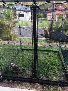 38 best images about cat fence on pinterest coyotes for Dog fence enclosure