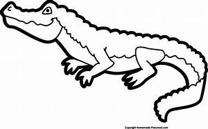 Black & White clipart alligator - Pencil and in color ...