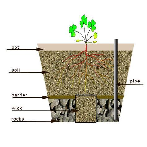 watering pots ideas  pinterest