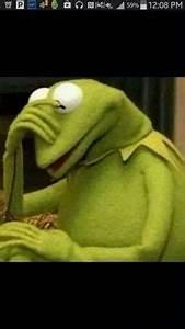 Kermit the frog facepalm   Meme Generator