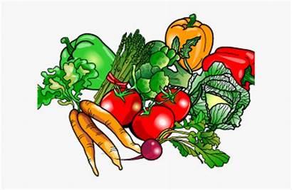 Clipart Vegetables Vegetable Clip Veggies Transparent Garden