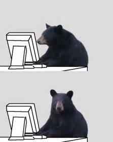 Patient Bear Meme - patient bear memes image memes at relatably com