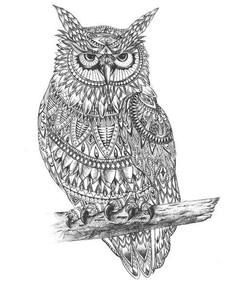 beautiful hand drawing owl aztec pattern graphic art