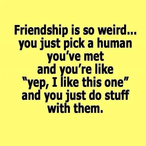 funny friendship quotes ideas  pinterest
