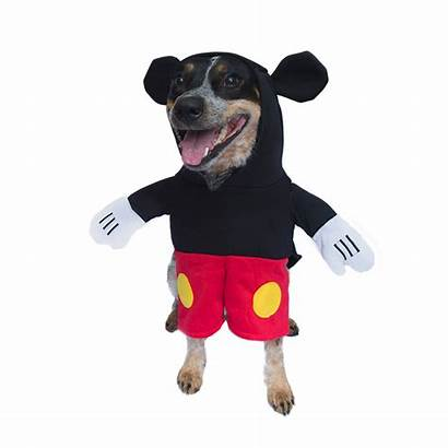 Mickey Mouse Dog Costume Funny Standing Dogs