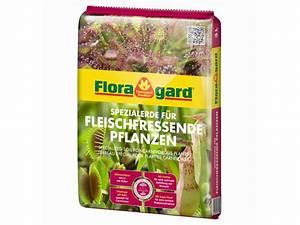 Fleischfressende Pflanzen Kaufen : spezialerde f r fleischfressende pflanzen kaufen ~ Michelbontemps.com Haus und Dekorationen
