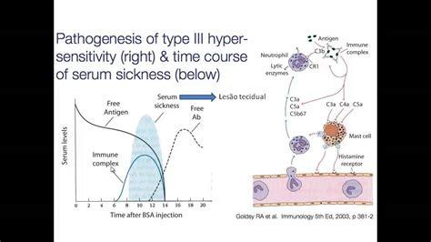 hipersensibilidades  tipo iii mediado por