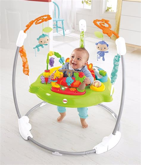 Baby Bouncer Chair Fisher Price Infant Child Activity