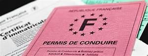 Défaut De Permis De Conduire : permis de conduire en france beaucoup trop cher ~ Medecine-chirurgie-esthetiques.com Avis de Voitures