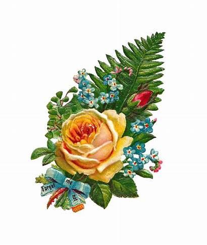 Rose Yellow Clipart Bouquet Clip Flowers Flower