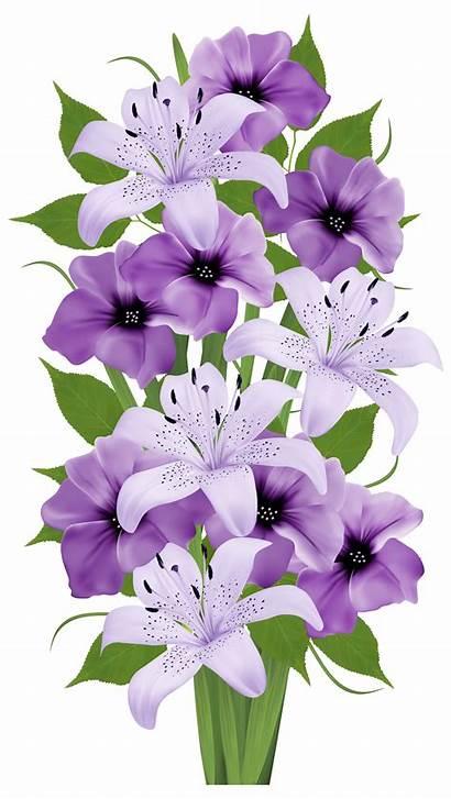 Lavender Flower Clipart Mauve Transparent Purple Bouquet