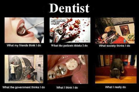 dentists   dentists