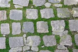 Unkraut Zwischen Pflastersteinen : gras zwischen steinplatten entfernen ~ Michelbontemps.com Haus und Dekorationen