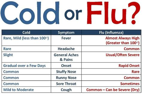 home remedies  common cold  flu
