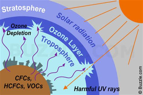why is ozone an important form of oxygen causes and effects of ozone layer depletion that are