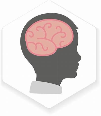 Mental Health Clipart Brain Transparent Mind Matter