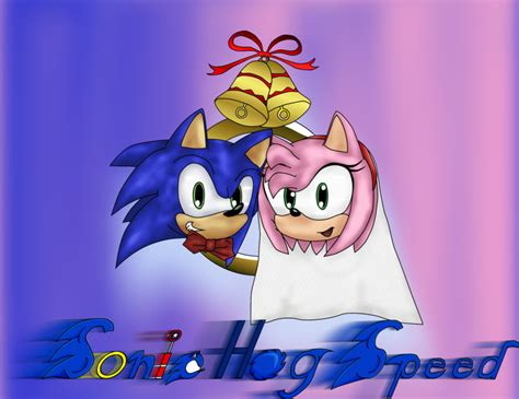 Sonamy Wedding By Sonichogspeed On Deviantart