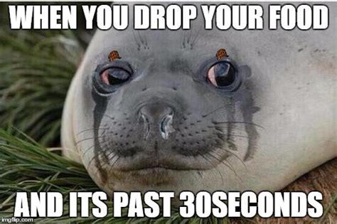 For Seal Meme - crying seal imgflip
