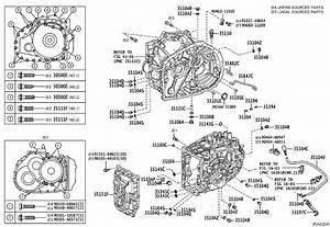 Toyota Rav4 Automatic Transmission Oil Pan Magnet  Magnet