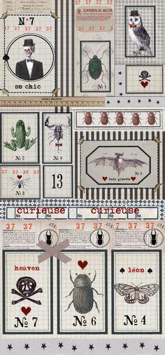 papier peint cabinet de curiosite papier peint le cabinet de curiosit 233 s charge pixers fr bureaux et placards