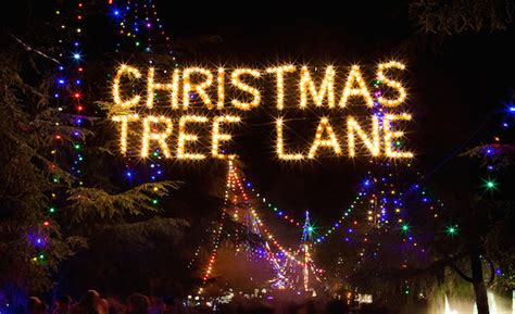 christmas tree farms in clovis california 10 things to do in the fresno area this season