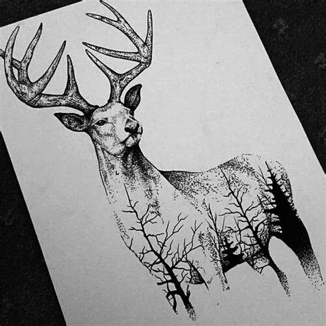 animals  art images  pinterest fantasy art