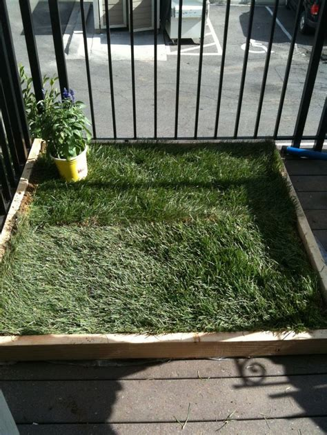 diy potty patch for patio i might do this so i don t