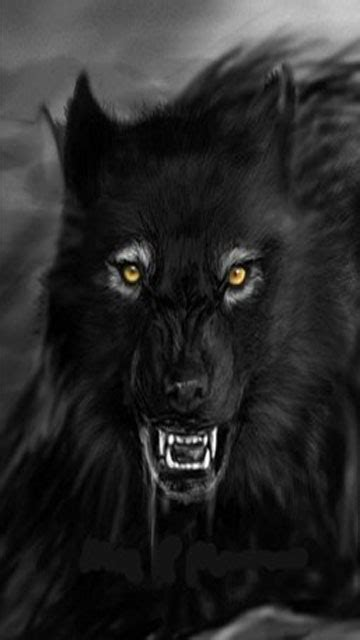 Wolf Wallpaper For Iphone 11 by Wolf Mobile Wallpaper