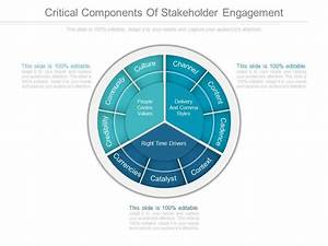 Critical Components Of Stakeholder Engagement Diagram