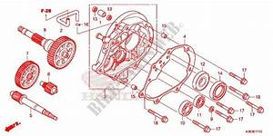 Gearbox For Honda Pcx 150 2016   Honda Motorcycles  U0026 Atvs