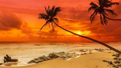 Sunset Amazing Wallpapers Backgrounds Graphic Psd Trends