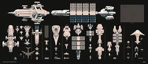 Citizen Spotlight - Ship Size Comparison