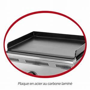 Plaque De Plancha Seule : choisir une plancha quel type de plaque blog de raviday ~ Dailycaller-alerts.com Idées de Décoration