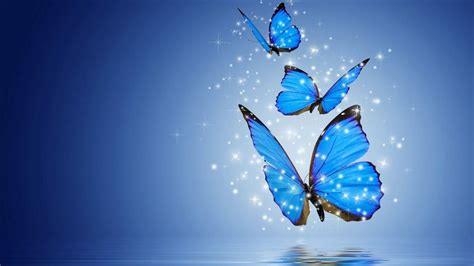Animated Butterfly Wallpaper For Mobile - computer wallpapers blue butterfly best hd wallpapers