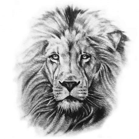 tatoo temporaire tete de lion nb