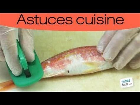 comment cuisiner un sandre lever les filets de poissons funnycat tv