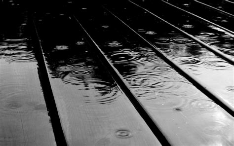 Black And White Rain Wallpaper Rain Drops 50 Best Black And White Wallpapers