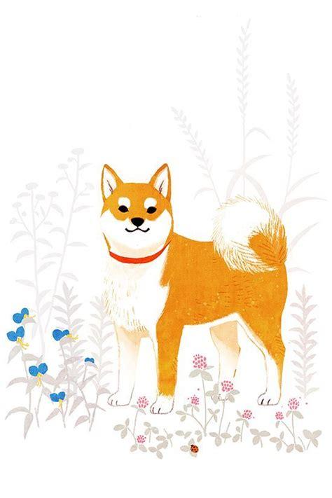 shiba inu drawing shiba inu dog illustration dog drawing