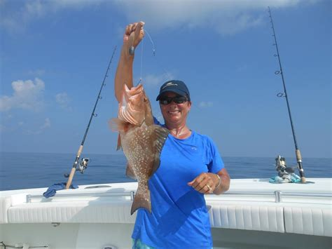 grouper fishing plentiful terry says vicki 70ft capt water evidenced mate pictured caught been st goboatingflorida