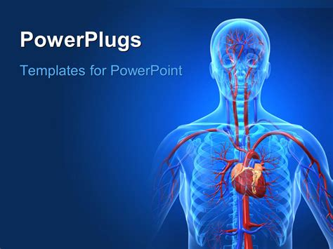 Free Cardiac Powerpoint Templates by Powerpoint Template A Human Anatomy With Bluish