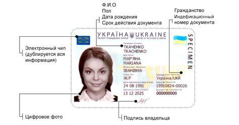 Сколько стоит замена паспорта?