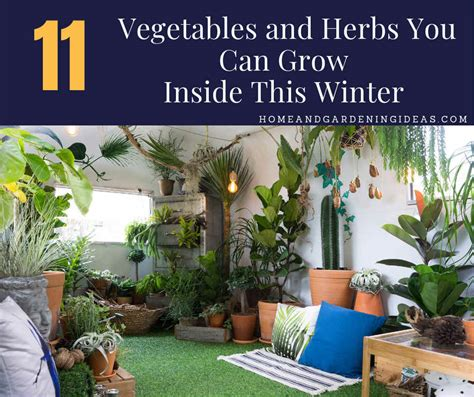 Do You Winter Gardening Blues by 11 Vegetables And Herbs You Can Grow Inside This Winter