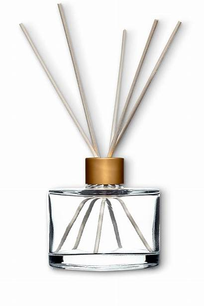 Diffuser Glass Bottles Packaging Reed Lifestyle Fragrance
