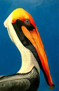 Colorful Pelican Painting