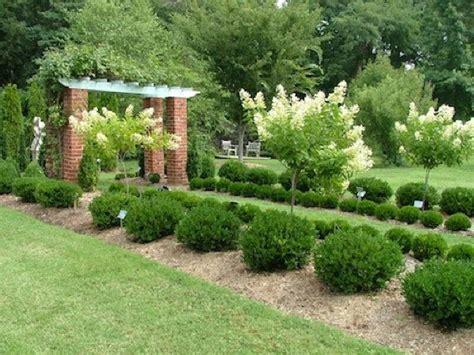 Gartengestaltung Mit Buchsbaum by Contemporary Decorating Boxwood Shrub Small Evergreen