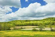 Spring Farm Landscapes