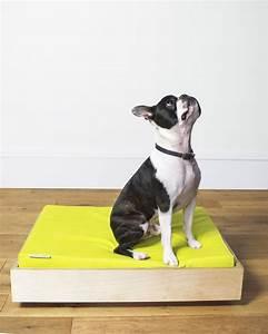 Hund Im Haus : modern dog beds from hund haus dog milk ~ Lizthompson.info Haus und Dekorationen